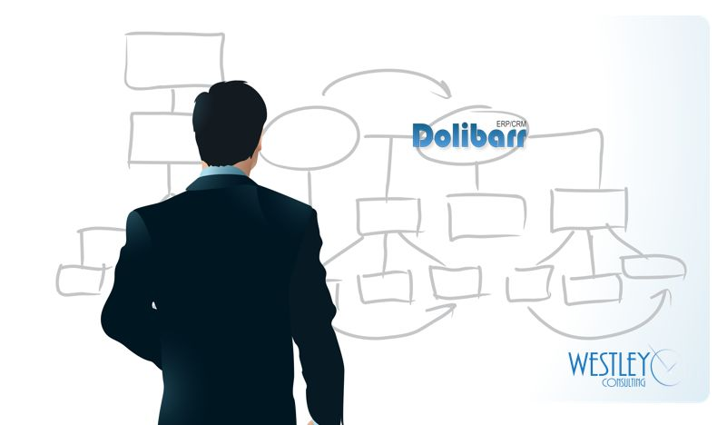 Dolibarr Consulting Services